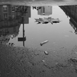 Bild in schwarzweiß: Regenpfütze im Teer. Am Rand liegen Zigarettenkippen, auf der Pfütze schwimmt ein Ahornblatt. In der Pfütze spiegeln sich hohe und Hochhäuser